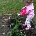 Our daughter watering the square foot garden - first year.